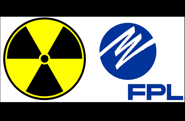 florida power and light nuclear energy progress energy florida public service commission nukes