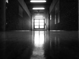Public schools, endangered species. (DesignSnapshot)