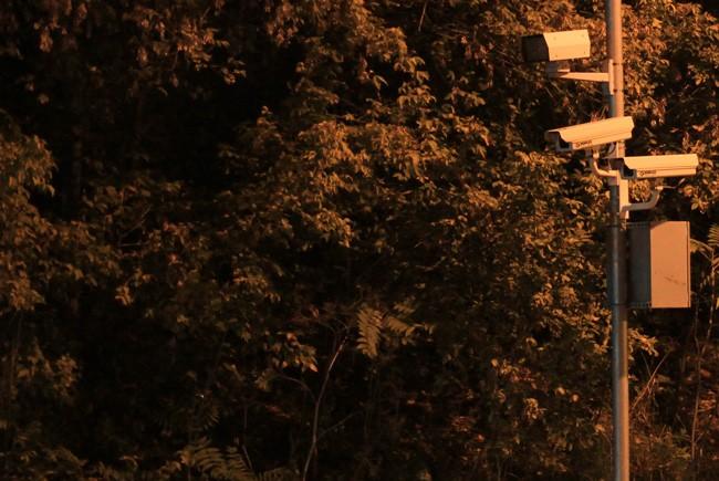 The sun is setting on Palm Coast's red-light camera program.  (Robb Ebright)