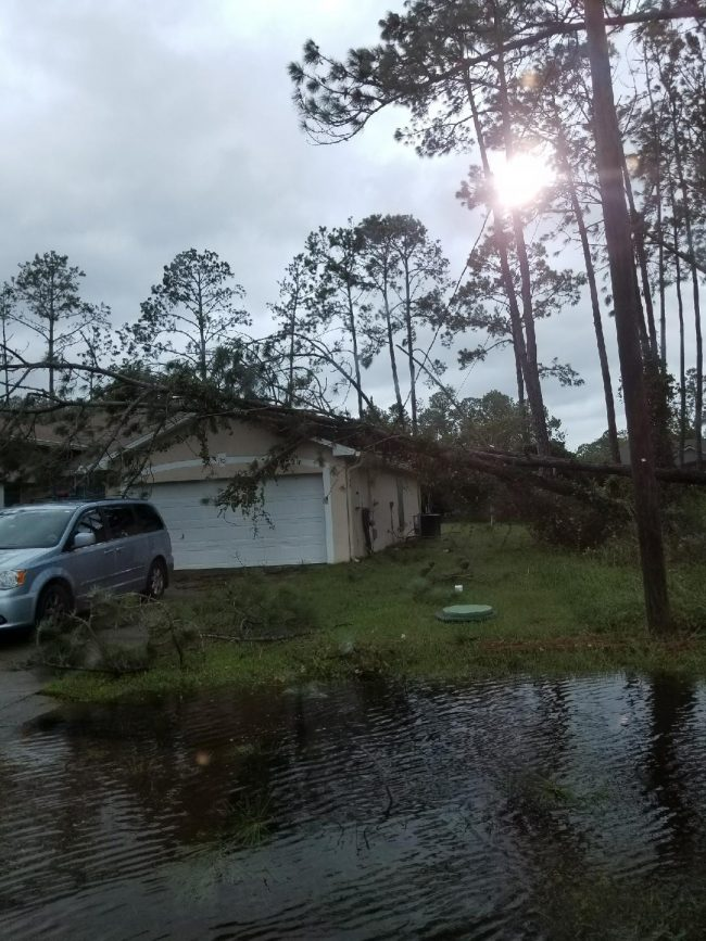 On Reedsville Drive at the west end of Palm Coast's R Section. (Contributed)