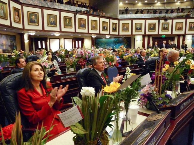 Republicans have further marginalized Democrats in the Florida House.