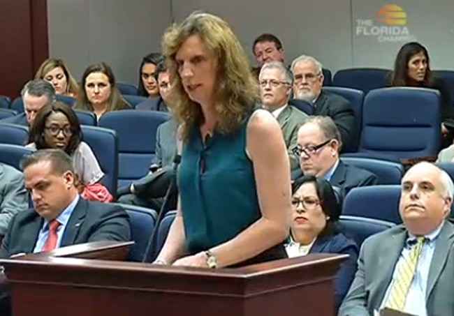 Cindy Robert Sullivan addressing the Civil Justice Subcommittee Wednesday, with Rep. Artiles to her right. (Florida Channel)