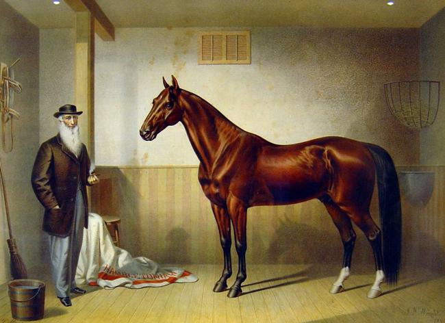 Rysdyk's Hambletonian, 1876
