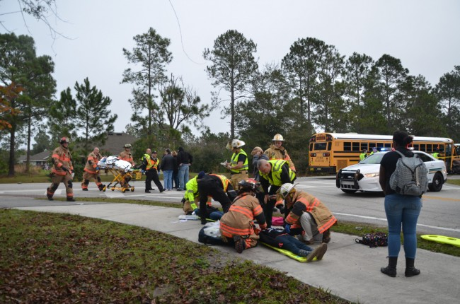 Palm Coast's fire chief said eight children and two adults were treated for injuries. Click on the image for larger view. (c FlaglerLive)
