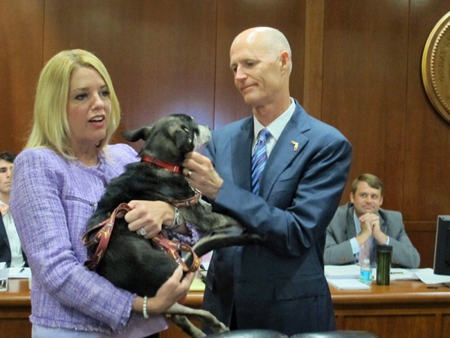 The petting is over between three members of the Florida Cabinet--each of whom has gubernatorial ambitions--and Gov. Rick Scott as the abrupt exit of FDLE chief Gerald Bailey has touched off the most serious controversy of Scott's tenure. (Bill Cotterell/Florida Memory)