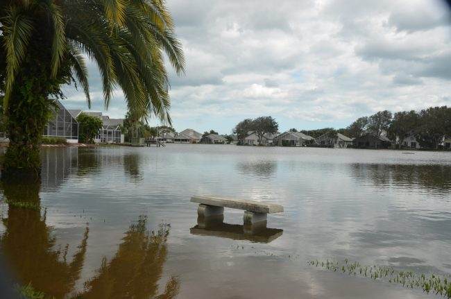 sea colony hurricane matthew