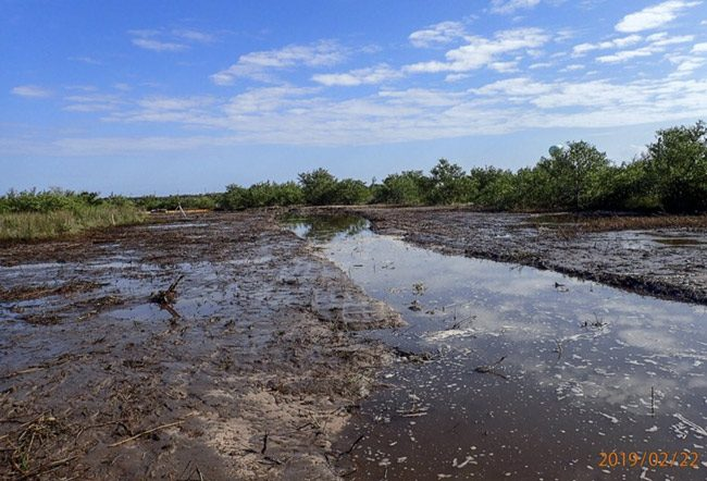 So-called Section A of the St. Johns Water Management District's wetlands restoration project, under construction, a project one opponent is terming 'wetlands degradation.' (SJRWMD)