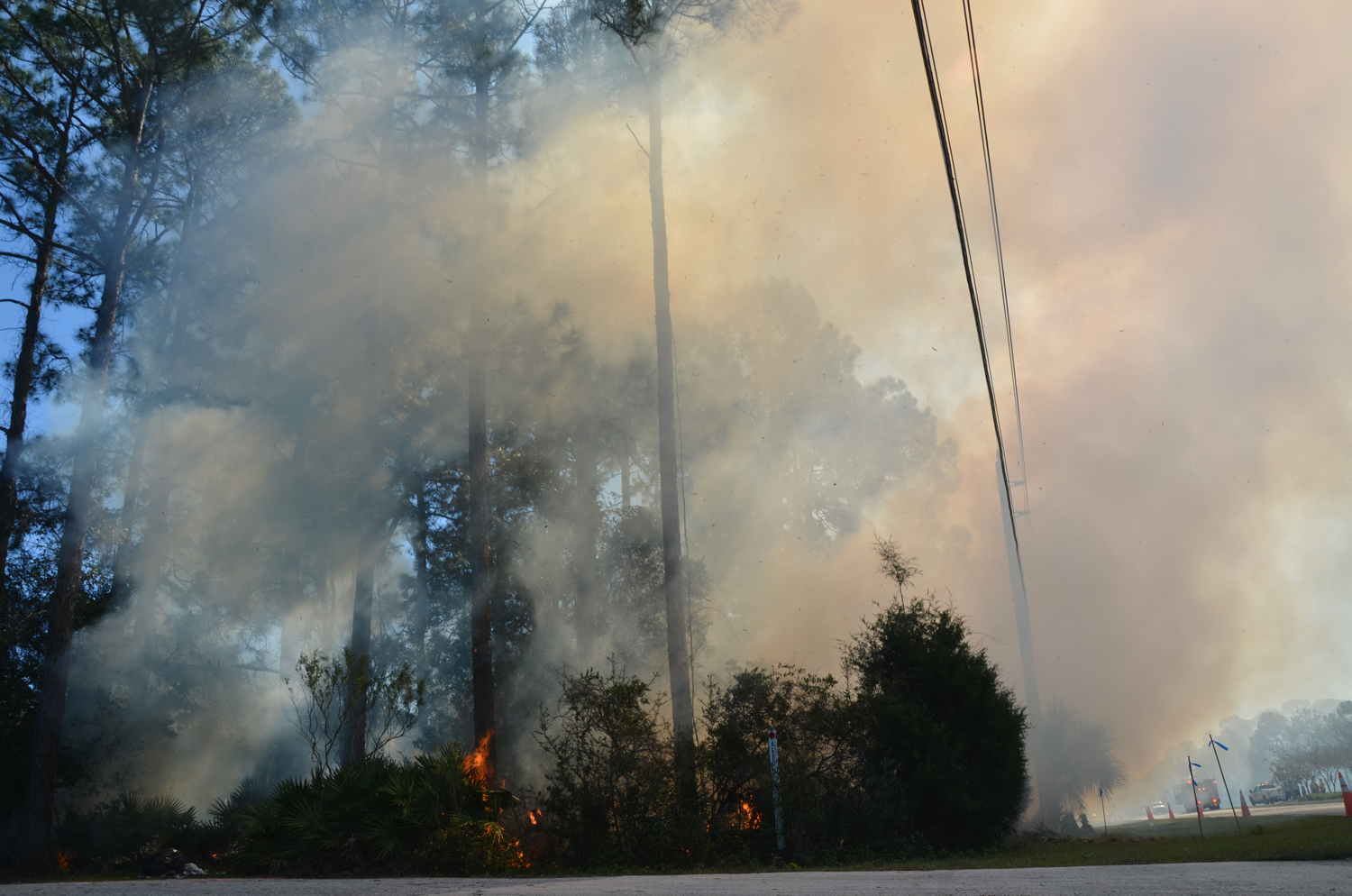 The fire along Seminole Woods Blvd. started as a 70 by 70 blaze but was then intentionally broadened to an acre to prevent fire issues later. (© FlaglerLive)