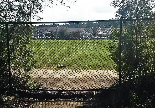 ralph carter park fence crime