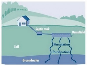 septic tank  systems explained florida