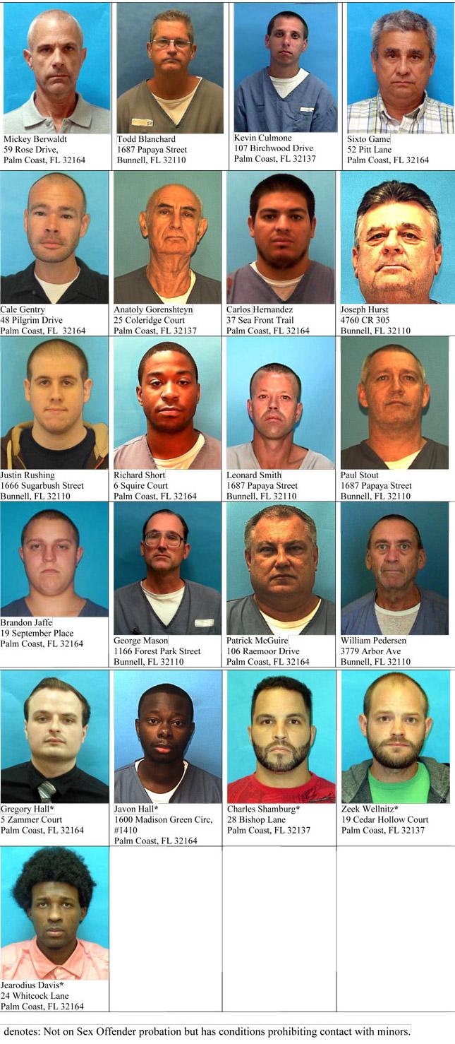 sex offenders halloween palm coast