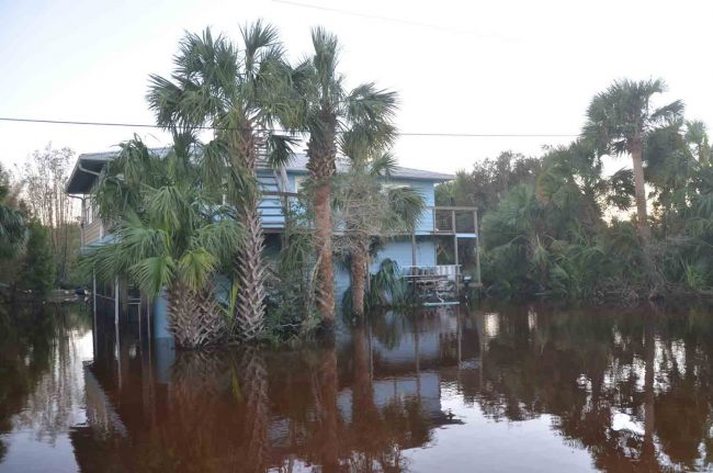 Former School Board member Evie Schellenberger's house was among the most severely flooded by the storm. Here, the waters had already receded considerably, though it was Sunday. Click on the image for larger view. (c FlaglerLive)