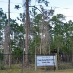 Not so fast: The planned locating of the sheriff's district office on land adjacent to the county public library on Palm Coast Parkway is no longer the case: the county commission has opted to move the location back to Bunnell. (© FlaglerLive)