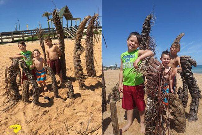 beach creations