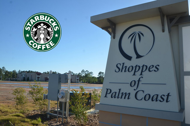 starbucks palm coast shoppes state road 100