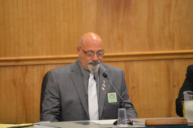 steven nobile palm coast city council charter review