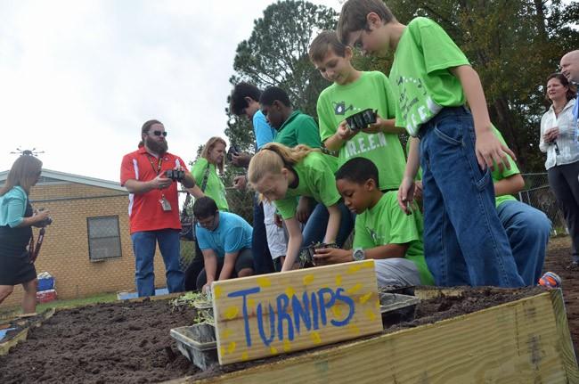 bunnell vegetable community garden