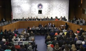 The Subcommittee on the Constitution, Civil Rights and Human Rights this morning. Click on the image for larger view.