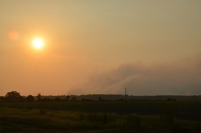 The fire season has been nothing like that of 2011, when the Espanola fire burned several hundred acres. Smoke this week has been wafting over Flagler from controlled burns in other counties, but Flagler itself is quiet. (© FlaglerLive)