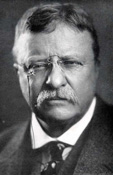 teddy roosevelt imperialism