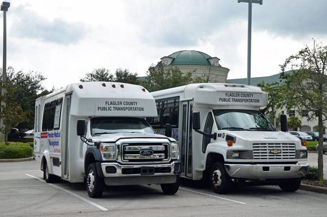 flagler county public transportation