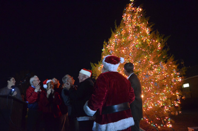 tree lighting ceremony palm coast