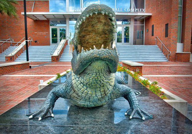 A Gator that knows its Kant. (Matthew Paulson)