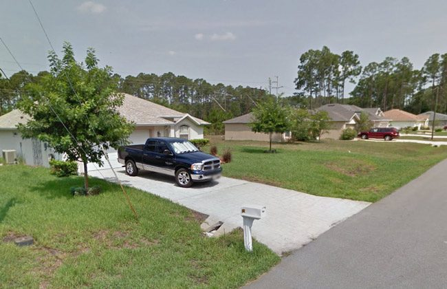 David Niesse was discovered in his swale in front of his house on Tuesday, on Utica Path in Palm Coast.