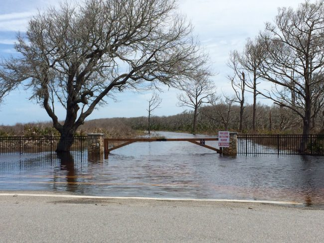 The entrance to Washington Oaks Garden State Park. (c FlaglerLive)
