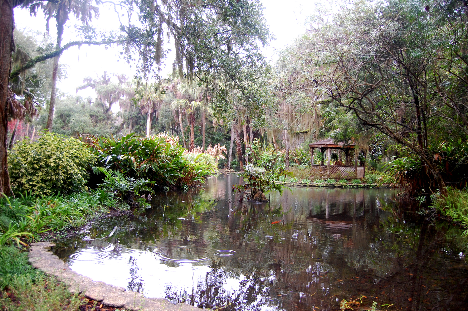 Florida Proposing Privatized Camping And Rv Sites At 56 State Parks Including Washington Oaks