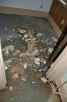 In an area straddling two rooms in the old portion of the courthouse, the carpet was soaked and heavy with debris, as seen during a visit last Friday. Click on the image for larger view. (© FlaglerLive)