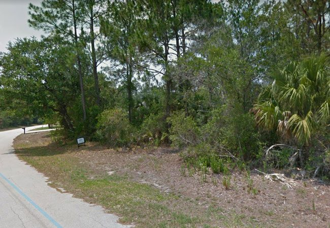The shooting took place on White Star Drive in Palm Coast, an area lined by wooded lots.
