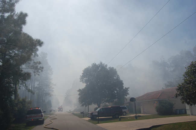 palm coast wildfire on esperanto drive
