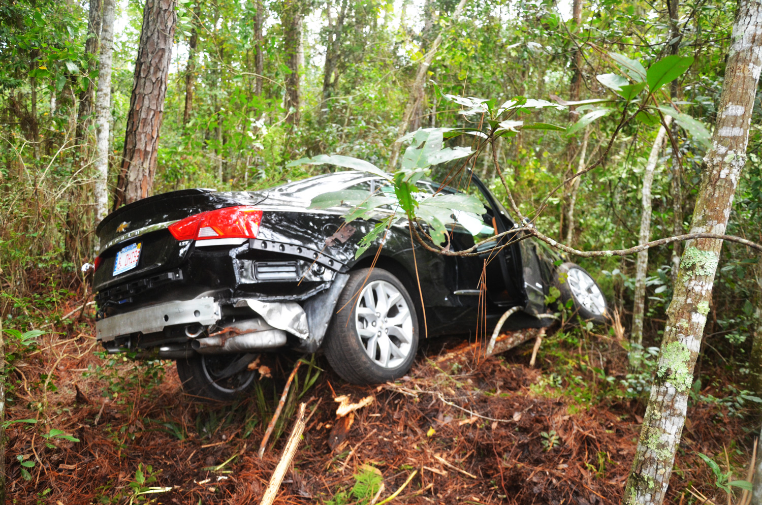 Car Crashes Through 200 Feet Of Woods 2 Walk Away Flaglerlive