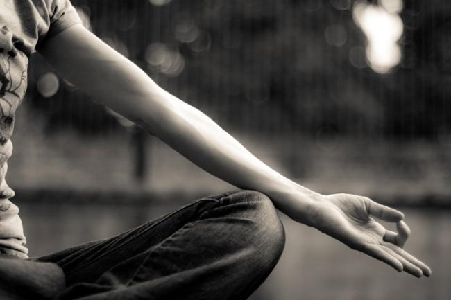 yoga state farms wellness program