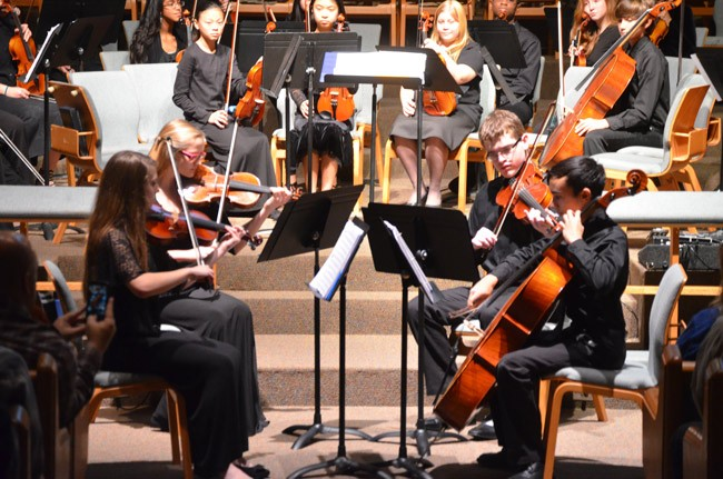 flagler youth orchestra chamber music camp